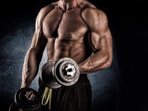 Плюсовете на фитнеса