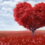 подарък за свети валентин на момче от Giftbox