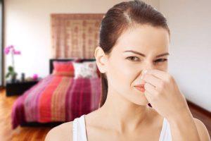 премаване на лошите миризми