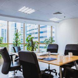 4 растения, които да поставим в офиса