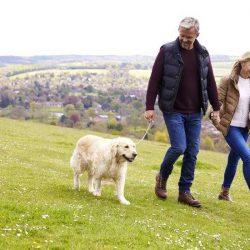 5 причини защо собствениците на кучета живеят по-дълго